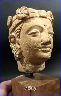 Ancient Style Ghandharan Bust PAKISTAN Museum Mount Circa 1956